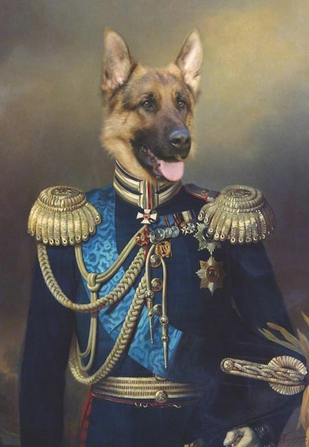 portrait de Berger Allemand de artiste Daniel trammer