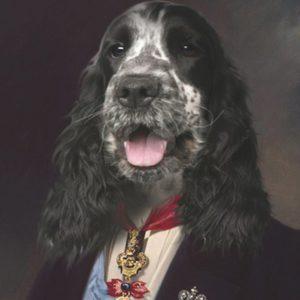 portrait de chien cocker oeuvre de Daniel Trammer